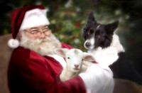 Santa, Tess and Lamb 2012